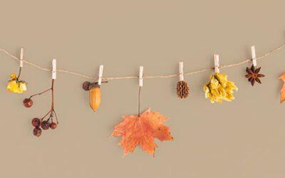 Creatief met de herfst!